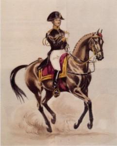 Comte d'Aure